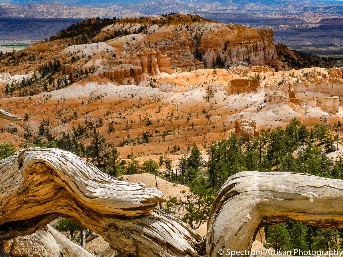 A different world in Bryce National Park, Utah
