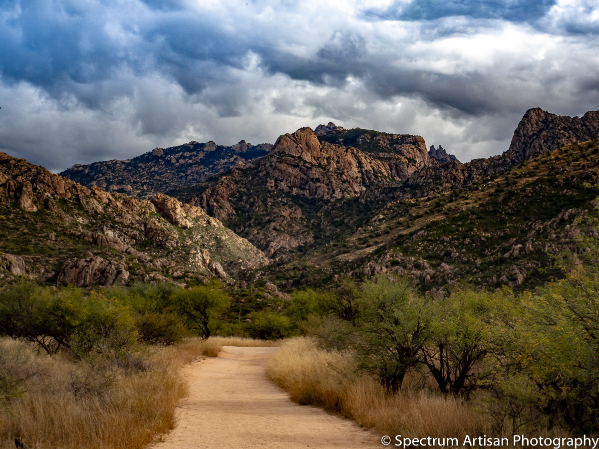 Heading out on a hike in Arizona's Catalina State Park